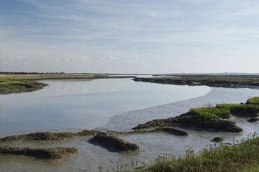 Explore The Essex Coastline The Discovery Coast Good